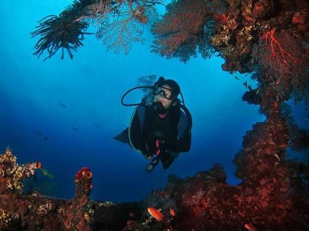 tempat-diving-bali4